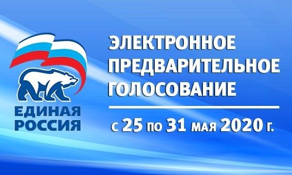 В Челябинской области стартовало предварительное голосование