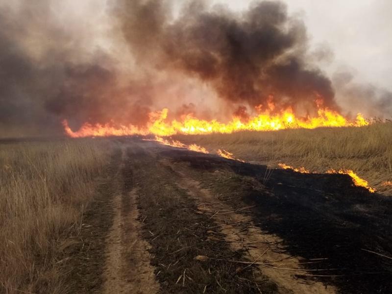 Огнеборцы отстояли Киевку