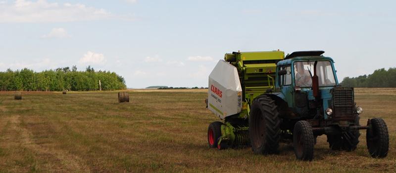 Заготовка сена даётся непросто